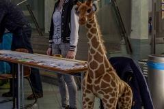 Julia & Giraffe